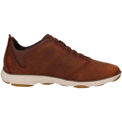 Geox U52D7B00TI Basket Homme Brown Brown - Chaussures Baskets basses Homme