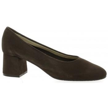 Chaussures Femme Escarpins Brenda Zaro Escarpins cuir velours Marron