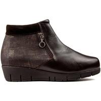 Chaussures Femme Bottines Dtorres DOTS THAIS CREMALLERA BOUTEILLES marron