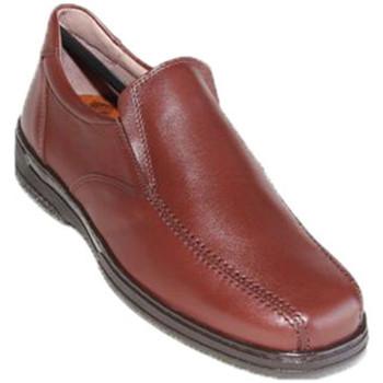 Chaussures Homme Mocassins Primocx Chaussure spéciale pour hommes pour les marrón
