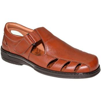 Chaussures Homme Sandales et Nu-pieds Primocx Sandales spéciales pour les diabétiques marrón