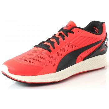 Chaussures Homme Running / trail Puma Ignite V2 Rouge