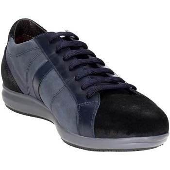 Chaussures Homme Baskets basses Stonefly 107700 100 Petite Sneakers Homme Bleu Bleu