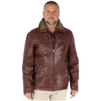 Vêtements Homme Vestes / Blazers Pallas Cuir Blouson  Sélection en cuir ref_happy42137-marron foncé Marron