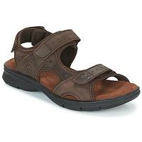 Chaussures Homme Sandales et Nu-pieds Panama Jack SALTON Marron