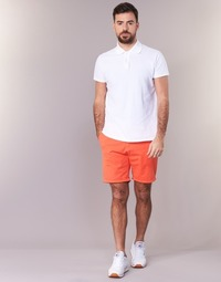 Vêtements Homme Shorts / Bermudas Scotch & Soda EREDT Corail