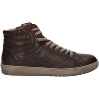 Chaussures Homme Baskets montantes Nero Giardini A705350U Basket Homme Brown Brown