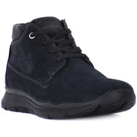 Chaussures Homme Boots Enval CAMOSCIO NOTTE     86,9
