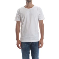 Vêtements Homme T-shirts manches courtes Selected 16046249 NEW DAVE T-SHIRT Homme WHITE WHITE