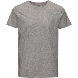 Vêtements Homme T-shirts manches courtes Jack & Jones 12104457 ARI T-SHIRT Homme LIGHT GREY LIGHT GREY