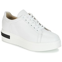 Chaussures Femme Baskets basses Sweet Lemon BISTRO Blanc