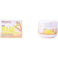 Beauté Soins & Après-shampooing Salerm Wheat Germ Hair Mask