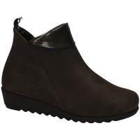 Chaussures Femme Boots Moda Bella  Marron