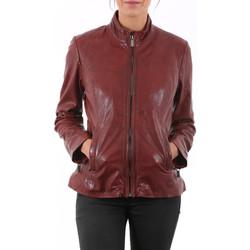 Vêtements Vestes en cuir / synthétiques Deercraft Lorel Paprika Rouge