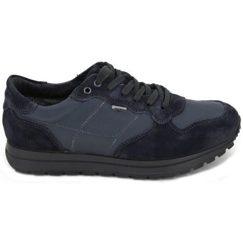 Chaussures Homme Chaussures aquatiques Igi&co Zapatillas Deportivas GTX 8741 bleu