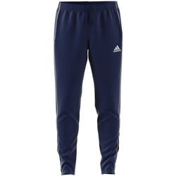 Vêtements Homme Pantalons de survêtement adidas Originals Core 18 Training Pant Blau
