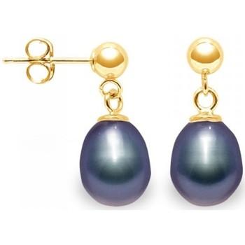Montres & Bijoux Femme Boucles d'oreilles Blue Pearls BPS K337 W Multicolore