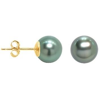 Montres & Bijoux Femme Boucles d'oreilles Blue Pearls Boucles d'Oreilles Perle de Tahiti et or jaune 375/1000 Multicolore