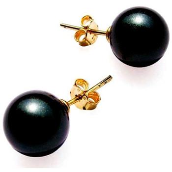 Montres & Bijoux Femme Boucles d'oreilles Blue Pearls Boucles d'oreilles Perles AAAA Noires et plaque or jaune Multicolore