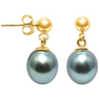 Montres & Bijoux Femme Boucles d'oreilles Blue Pearls Boucles d'Oreilles Perle de Tahiti et or jaune 750/1000 Doré