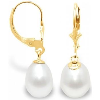 Montres & Bijoux Femme Boucles d'oreilles Blue Pearls Boucles d'Oreilles Perles de Culture Blanches et or jaune 375/10 Multicolore
