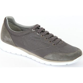 Chaussures Homme Baskets basses Geox Damian Grey Mesh Scamosciato