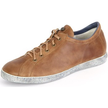 Chaussures Homme Baskets basses Think Think Kenidi Cappucchino Kombi Soft Calf