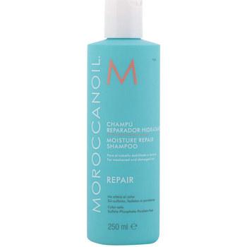 Beauté Shampooings Moroccanoil Repair Moisture Repair Shampoo  250 ml