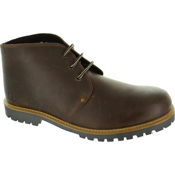 Chaussures Homme Boots Chatham Colorado II marron