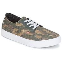 Chaussures Homme Chaussures de Skate Globe Motley LYT Vert