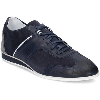 Chaussures Homme Baskets basses Gino Rossi Alan Bleu marine