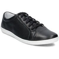Chaussures Homme Baskets basses Gino Rossi Iten Noir