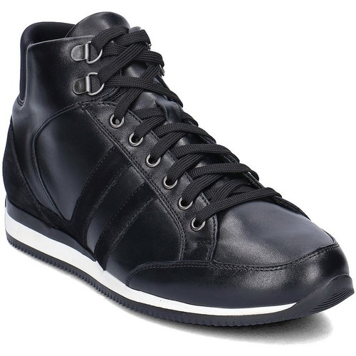 Gino Rossi Torino Noir - Chaussures Basket montante Homme