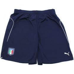 Vêtements Homme Shorts / Bermudas Puma FIGC TRAINING SHORT Bleu