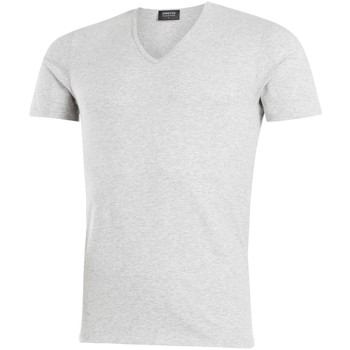 Vêtements Homme T-shirts manches courtes Impetus T-shirt col V Cotton Organic gris Gris