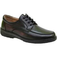 Chaussures Homme Derbies Primocx Lacets de chaussure homme spécial pour l negro