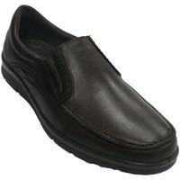 Chaussures Homme Mocassins Pitillos Chaussure homme pelle lisse  en marrón