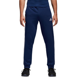 Vêtements Homme Pantalons de survêtement adidas Originals Core 18 Sweat Pant Blau