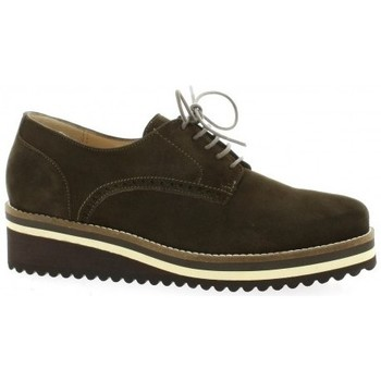 Chaussures Femme Derbies Vidi Studio Derby cuir velours Marron