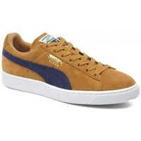 Chaussures Homme Baskets basses Puma Chaussures  Suede Classic + - Bistre / Peacoat Marron