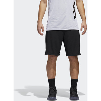 Vêtements Homme Shorts / Bermudas adidas Performance Short Accelerate Noir