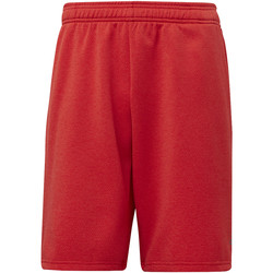 Vêtements Homme Shorts / Bermudas adidas Performance Short 4KRFT Tech Rouge