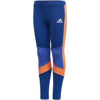 Vêtements Fille Leggings adidas Performance Tight Training Bleu / Orange
