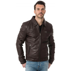Vêtements Homme Blousons Cityzen CLEVELAND BROWN Marron