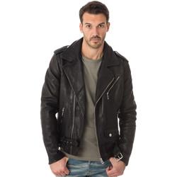 Vêtements Homme Vestes en cuir / synthétiques Daytona 73 RICK COW VEG DESSEL BLACK Noir