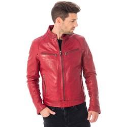 Vêtements Homme Vestes en cuir / synthétiques Daytona 73 DUSTIN SHEEP TIGER RED CHILI PEPPER Rouge