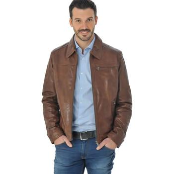 Vêtements Homme Vestes en cuir / synthétiques Daytona MAJOR SHEEP TIGER BISON Bison