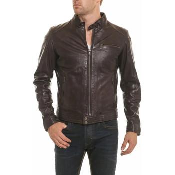 Vêtements Homme Vestes en cuir / synthétiques Daytona 73 HUGO SHEEP TIGER REDDISH BROWN ZZ Marron foncé