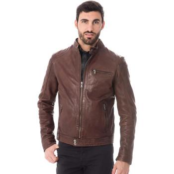 Vêtements Homme Vestes en cuir / synthétiques Daytona HUGO SHEEP TIGER BISON ZZ Bison