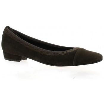 Chaussures Femme Ballerines / babies Elizabeth Stuart Escarpins cuir velours Marron
